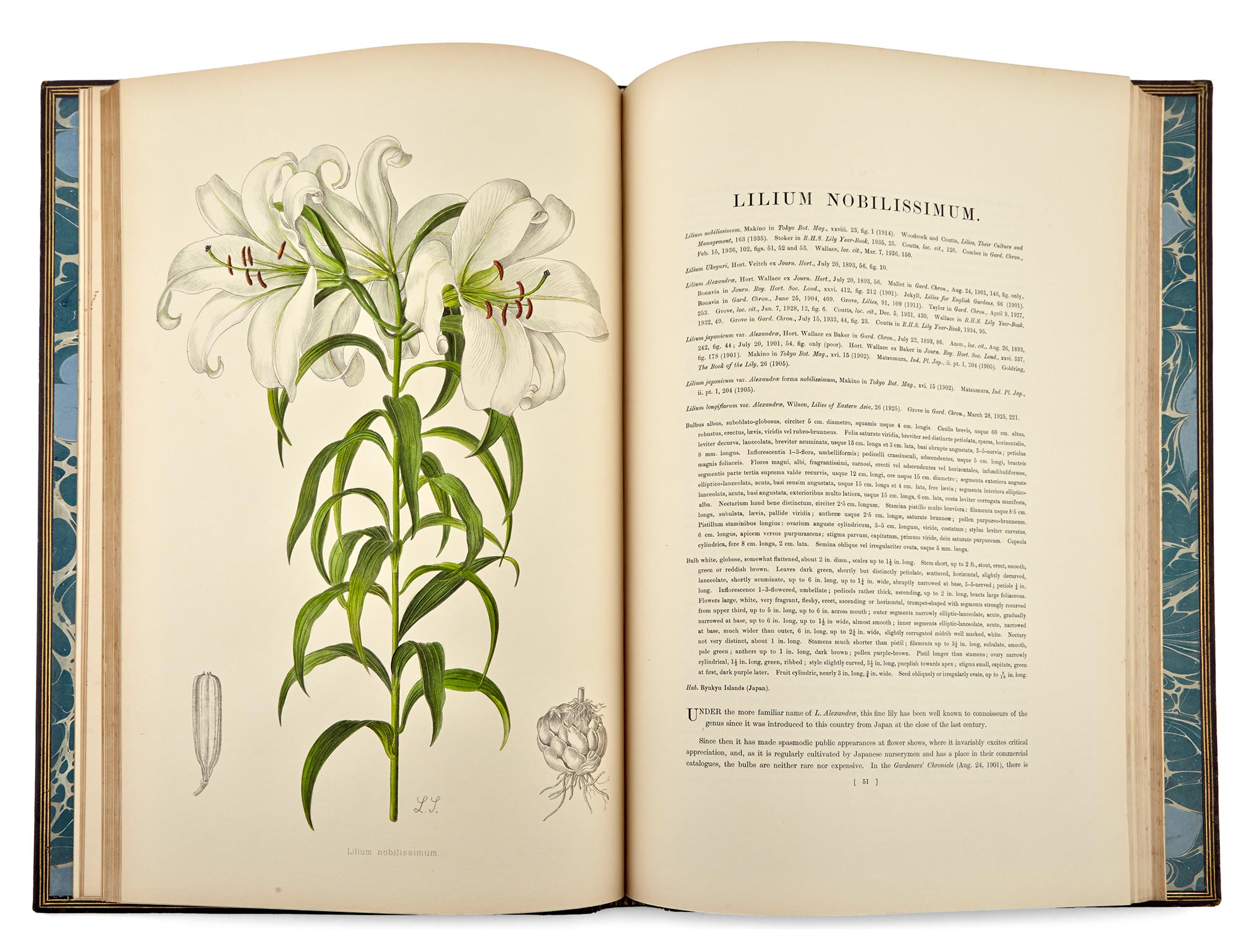 Lot image - ELWES, HENRY JOHN  A Monograph of the Genus Lilium.