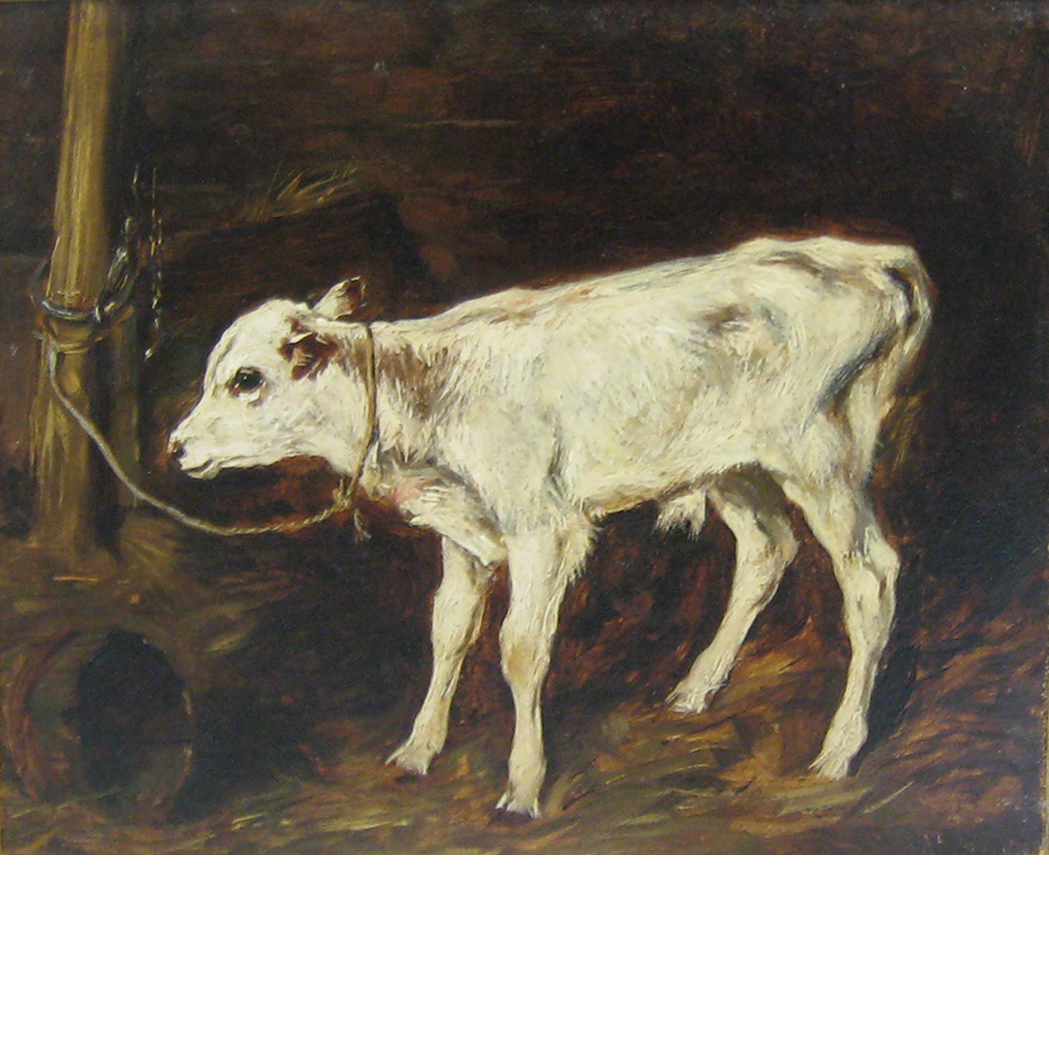 Lot image - Attributed to John Emms Study of a Calf