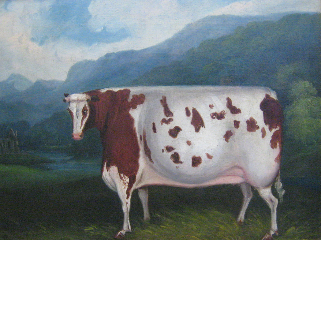 Lot image - European School 19th Century Portrait of a Cow