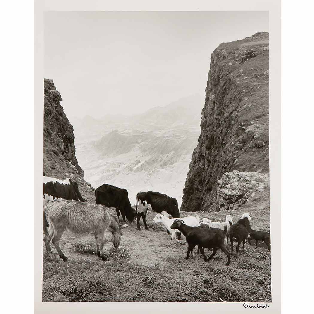 Lot image - EISENSTAEDT, ALFRED (1898-1995)  Group of three images
