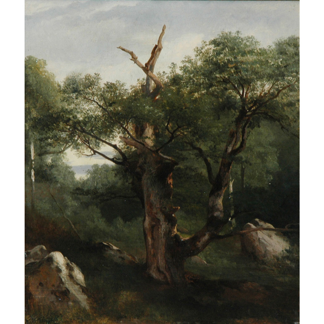 Lot image - Jules Louis Philippe Coignet French, 1798-1860 Study of a Tree