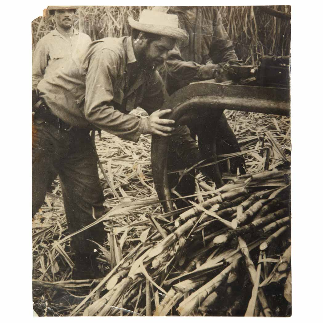 Lot image - GUEVARA, CHE ERNESTO  Press photograph of a straw-hatted Che Guevara working at a sugar mill