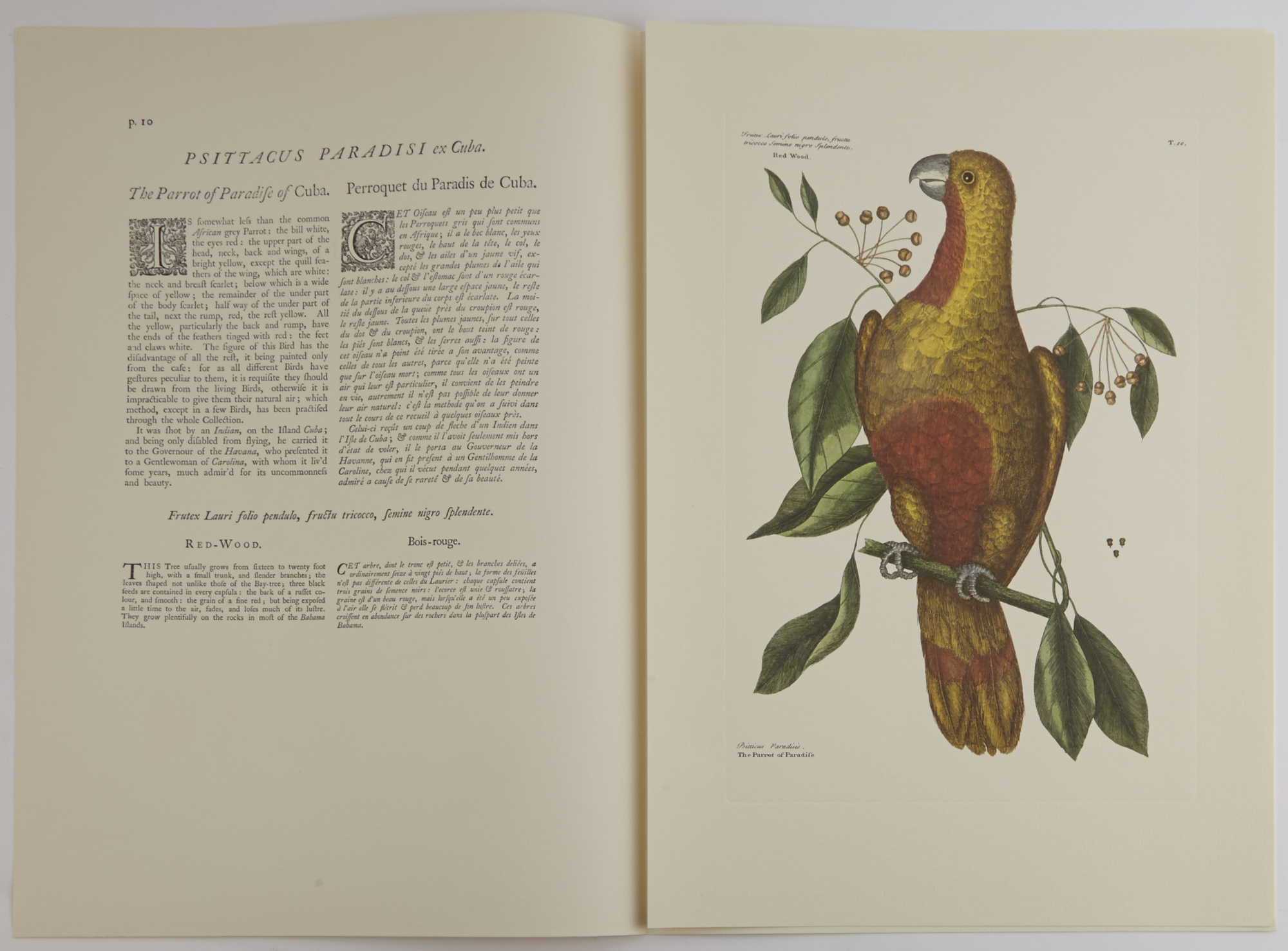 Lot image - CATESBY, MARK and FRICK, GEORGE and EWAN, JOSEPH  The Natural History of Carolina, Florida, and The Bahama Islands.