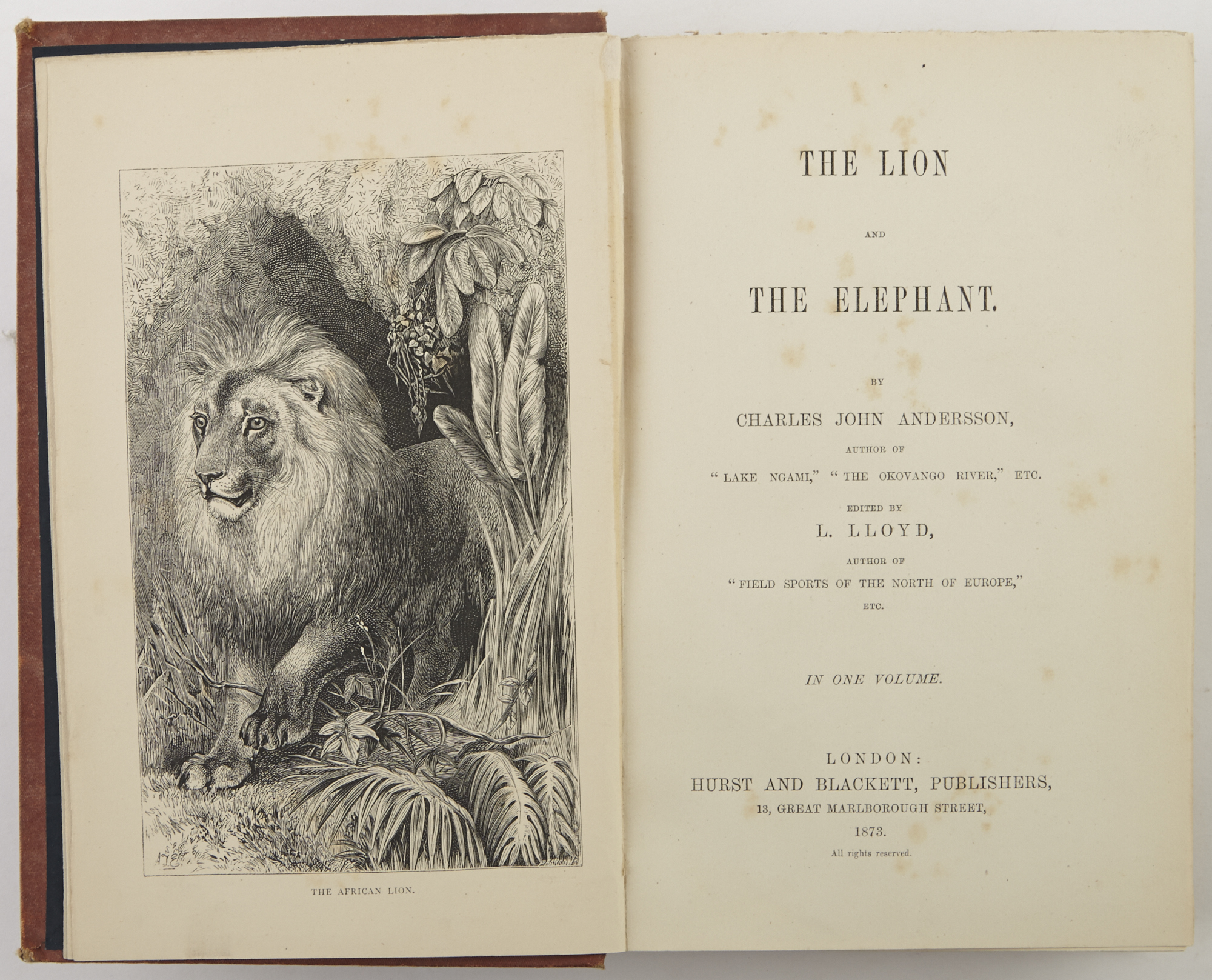 Lot image - ANDERSSON, CHARLES JOHN  The Lion and The Elephant.