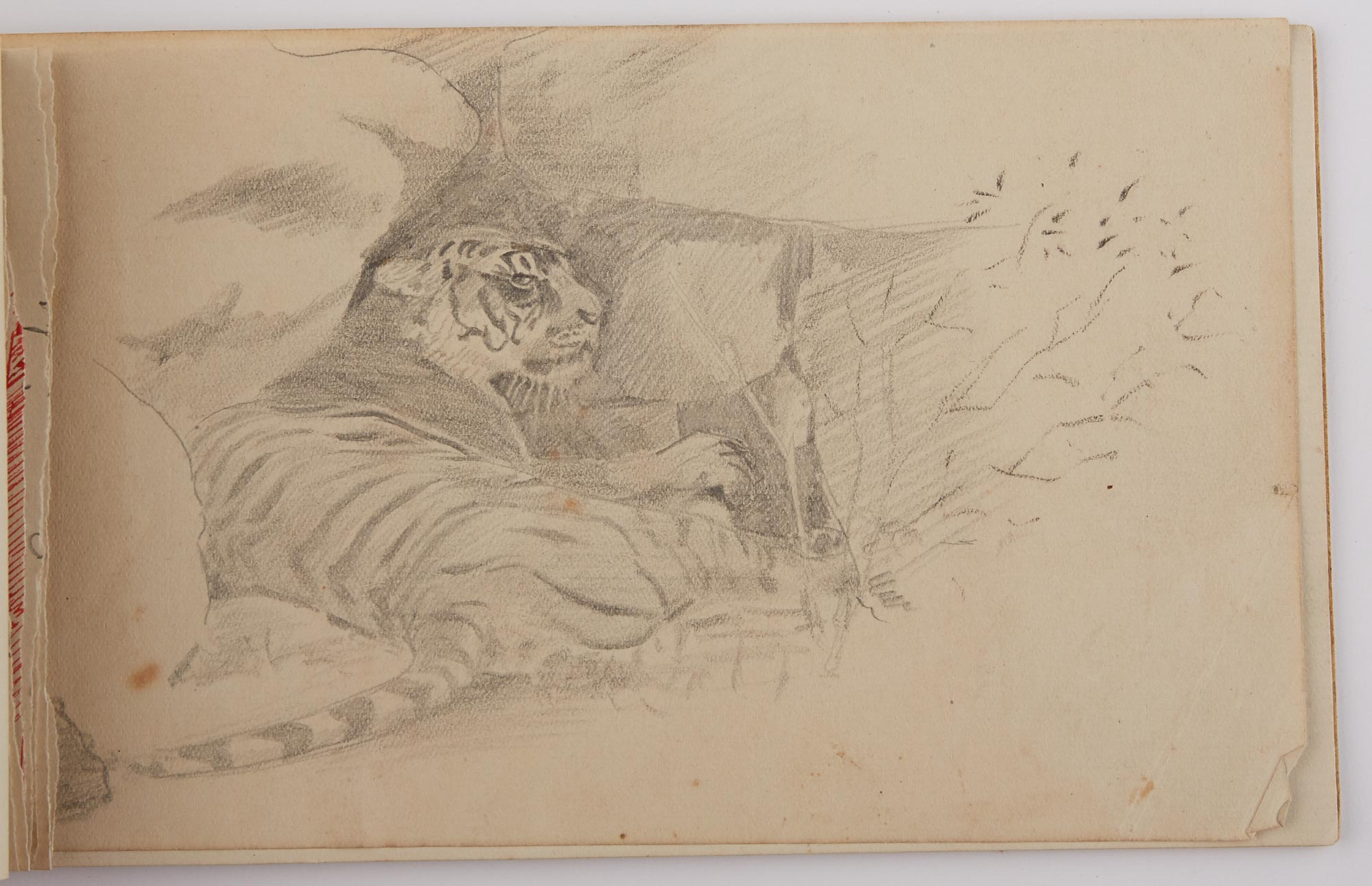 Lot image - [INDIA]  Archive of drawings and letters of C.R. Lloyd in portfolio marked Correspondence/Shikar.