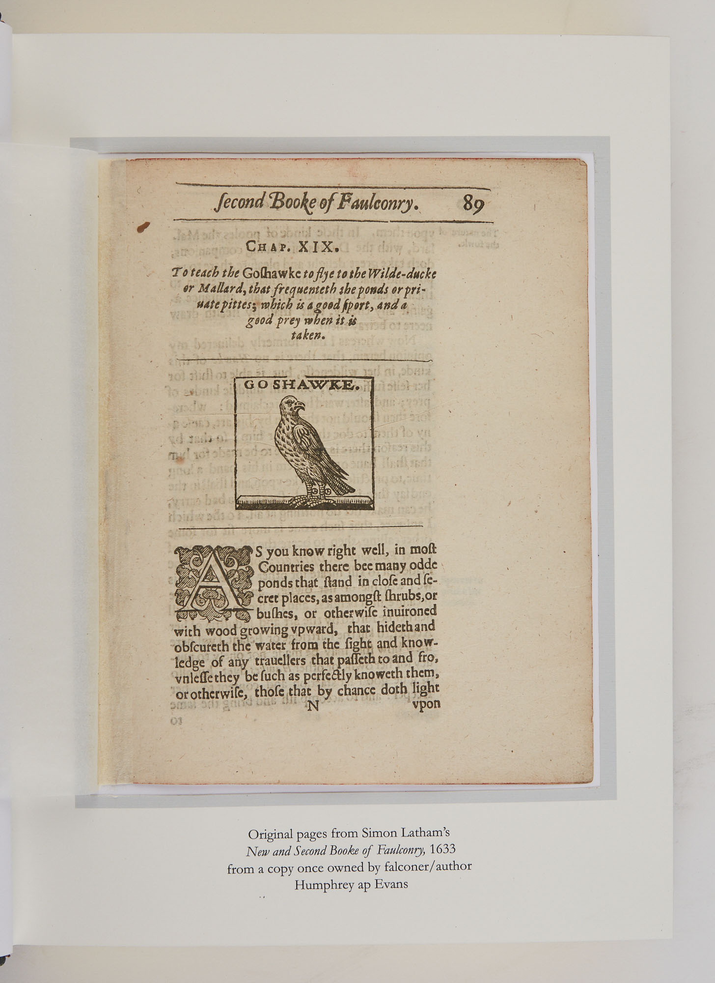 Lot image - [FALCONRY]  SWIFT, JOHN RESLER. Bibliotheca Accipitraria II. A Catalog of Books Ancient and Modern Relating to Falconry. Published in the English Language 1486 to 2000.