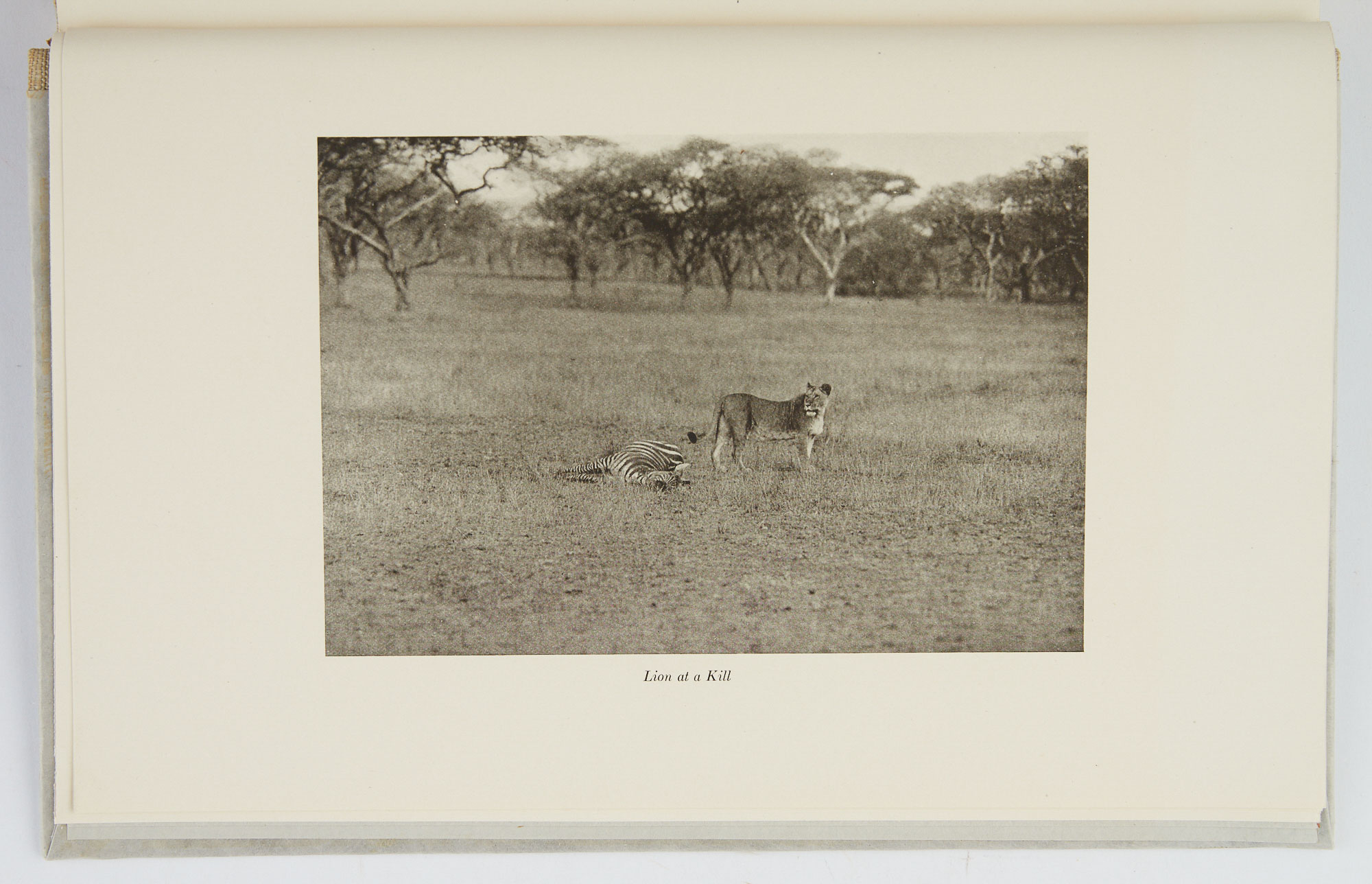 Lot image - EASTMAN, GEORGE  Chronicles of an African Trip.