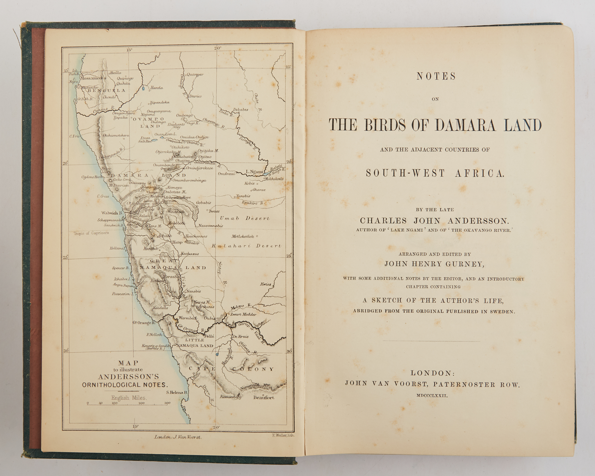 Lot image - ANDERSSON, CHARLES JOHN and GURNEY, JOHN HENRY, ed.  Notes on the Birds of Damara Land and the adjacent countries of south-west Africa.