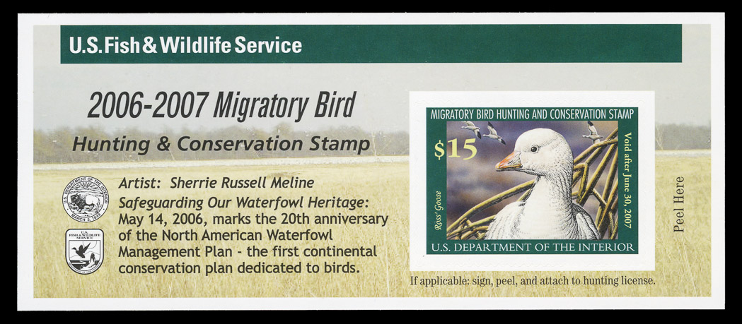 Lot image - United States Hunting Permits