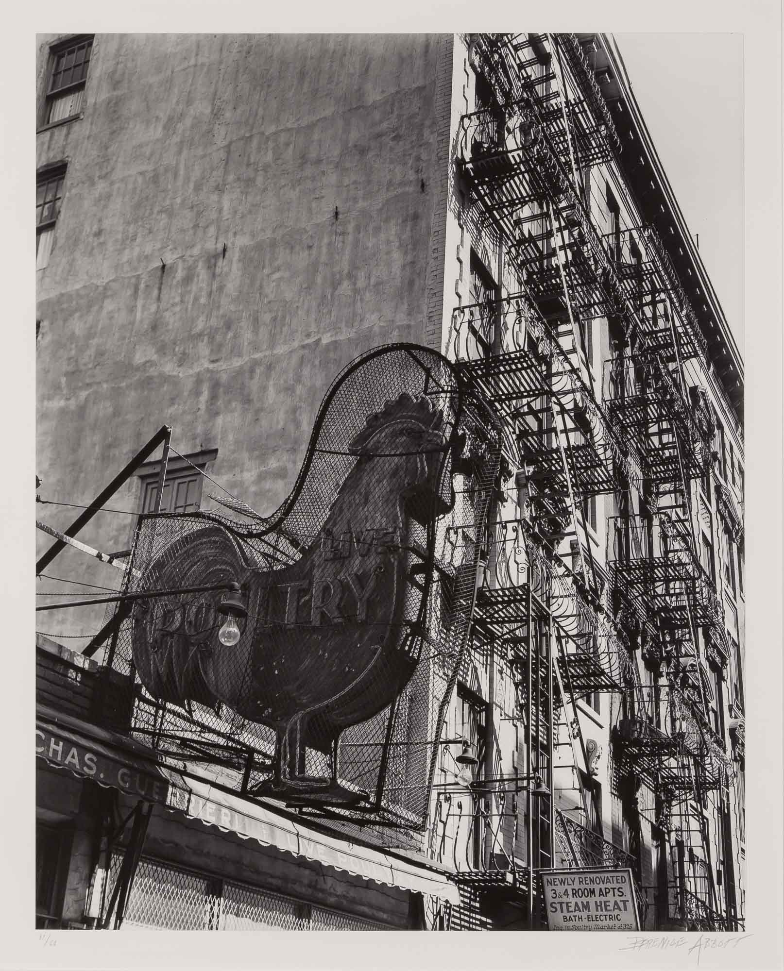 Lot image - ABBOTT, BERENICE (1898-1991)  Poultry Shop East 7th Street, Manhattan,