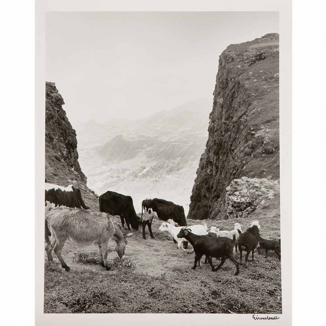 EISENSTAEDT, ALFRED (1898-1995)  Group of three images
