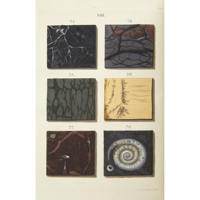 [COLOR PLATE--MINERALOGY]  [WIRSING, ADAM LUDWIG]. Afbeelfing der Marmor Soorten... (A Representation of Different Sort [sic] of Marble...)