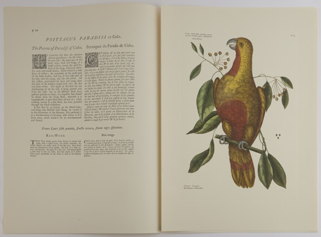 CATESBY, MARK and FRICK, GEORGE and EWAN, JOSEPH  The Natural History of Carolina, Florida, and The Bahama Islands.