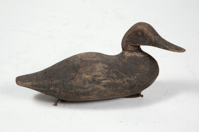 BLACK DUCK DECOY  Carved decoy of a Black Duck.