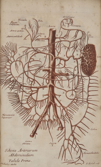 STUKELEY, WILLIAM  Of the spleen, its description and history, uses and deseases, particularly the vapors with their remedy ... To which is added, Some Anatomical Observations in the Dissection of an Elephant.