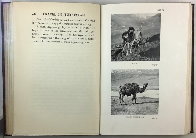 WOOD, J. N. PRICE  Travel and Sport in Turkestan.