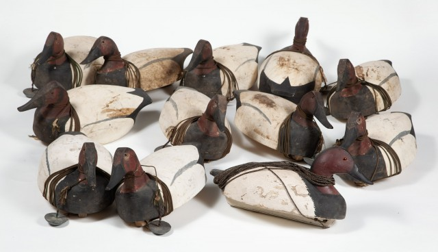 GROUP OF TWELVE CANVAS BACK DUCK DECOYS  12 carved and painted Canvas Back Duck decoys.