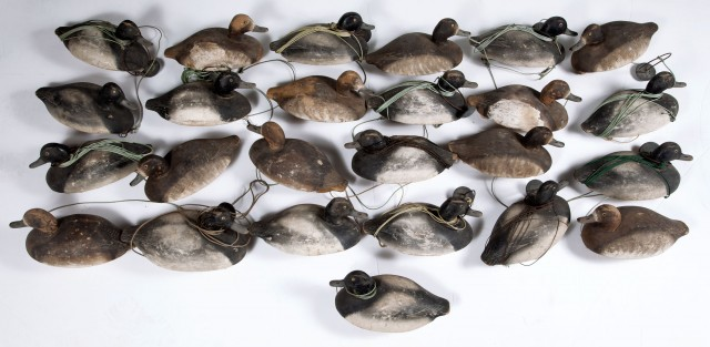 LARGE GROUP OF BLUE BILL DUCK DECOYS IN PAIRS  25 carved and painted decoys of likely Blue Bill ducks in male-female pairs.