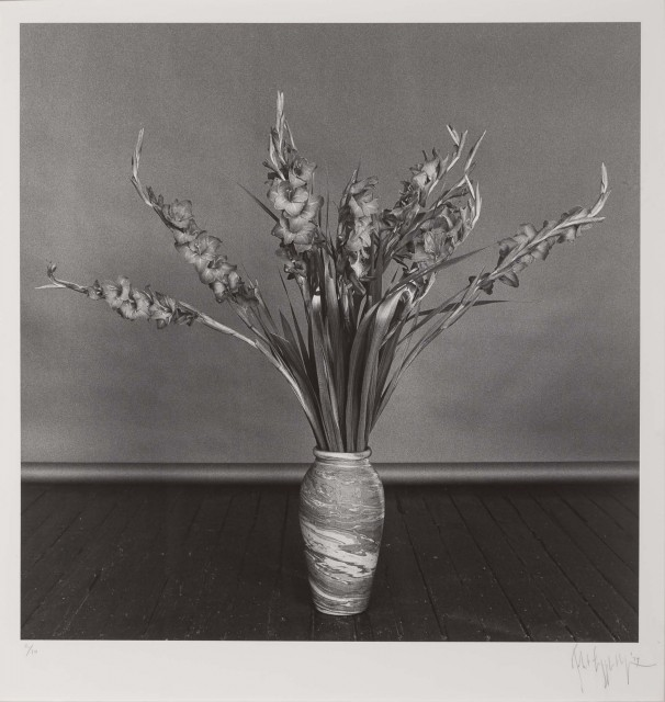 MAPPLETHORPE, ROBERT (1946-1989)  Gladioli,