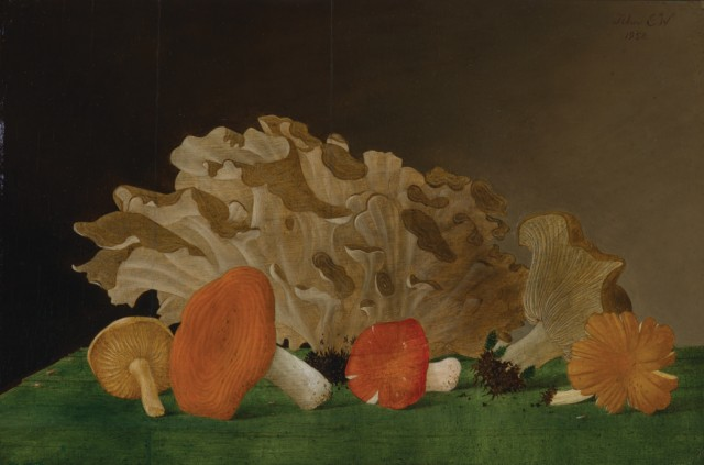 John Henry Wilde (1909-2006), Still Life with Toadstools II, 1952. Est. $5,000-7,000. Lot 80. Auction Oct 4